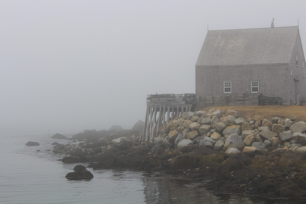 Peggy's Cove & Area24